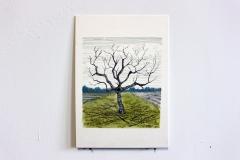 Der Apfelbaum 17x20cm
