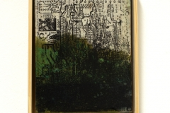 herbarium_047g
